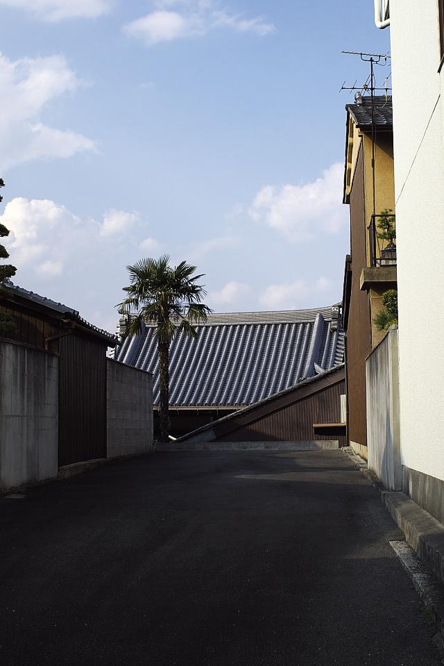 屋根へド~ン!