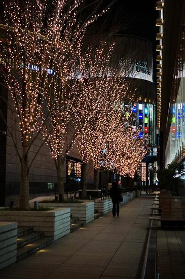 LEDの並木道