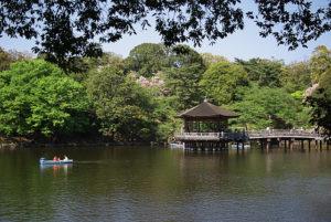 新緑の鷺池・浮御堂