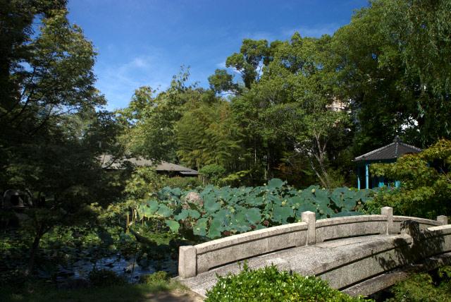 極楽浄土の庭 -2-_2