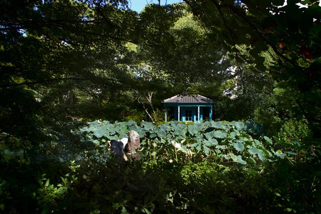 四天王寺・極楽浄土の庭