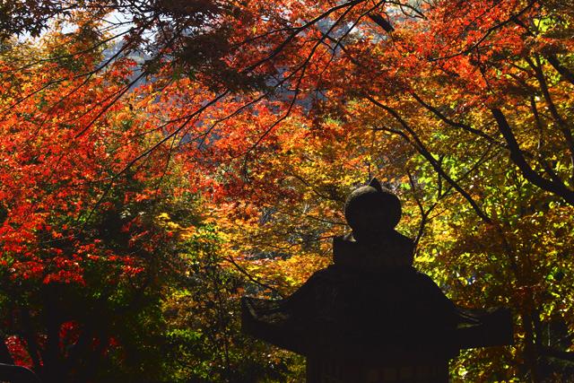 長谷寺・灯籠と紅葉 -4-