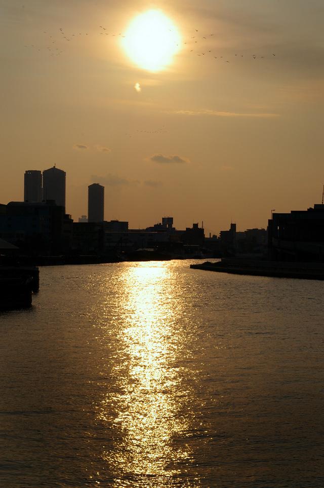 安治川の夕陽