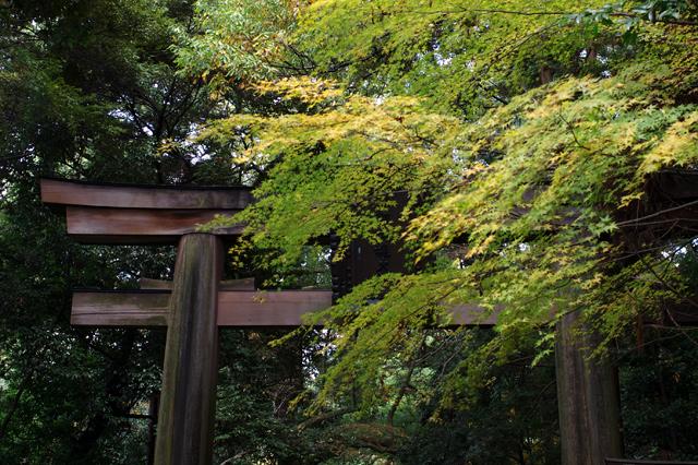 石上神社_1