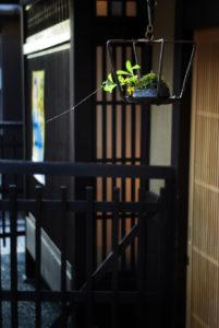 軒先飾り Part 2