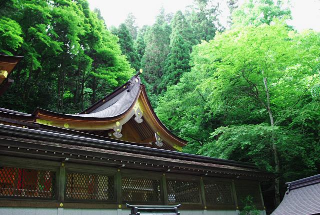 貴船神社の屋根_1