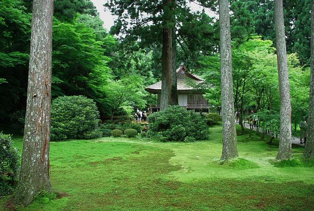 三千院の庭 #2