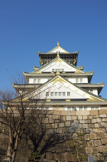 新春の大阪城_1