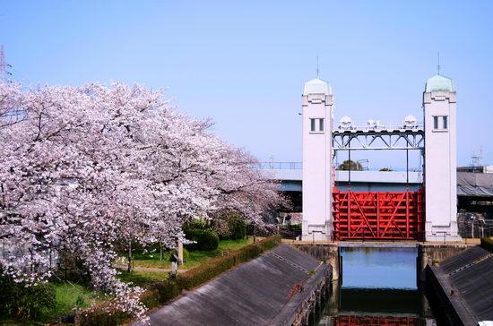 春はまだ遠し!!