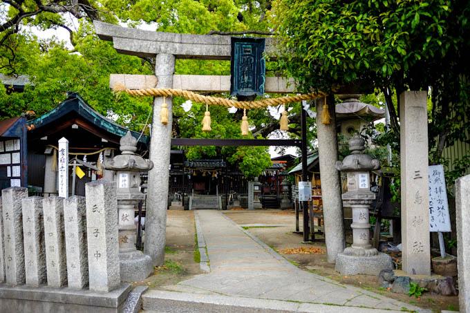 三島神社「薫蓋樟」(2)